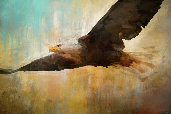 Photograph - The Essence Of The Eagle by Jai Johnson