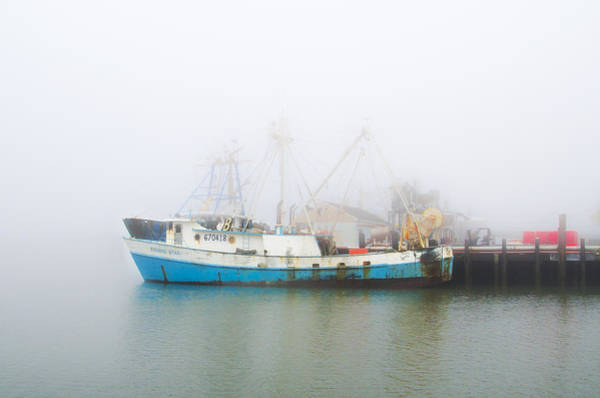 Wall Art - Photograph - The Evening Star In The Fog by Bill Cannon