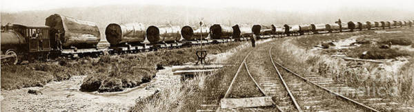 Photograph - The Excelsior Redwood Company Eureka Cal. A. W. Ericson Photo Circa 1890 by California Views Archives Mr Pat Hathaway Archives