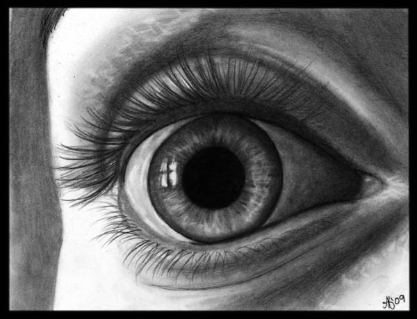 Wall Art - Drawing - The Eye With The Long Eyelashes by Alycia Ryan