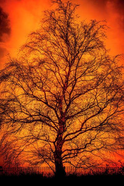 Wall Art - Photograph - The Fable Known As Hell by Jorgo Photography - Wall Art Gallery