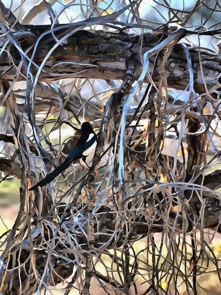 Mixed Media - The Fall Magpie 3 by Angelina Tamez