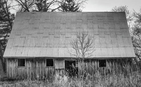 Wall Art - Photograph - The Farm Shed 2018 by Thomas Young