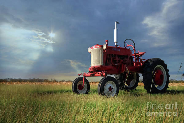 Mccormick Wall Art - Photograph - The Farmall Cub by Lori Deiter