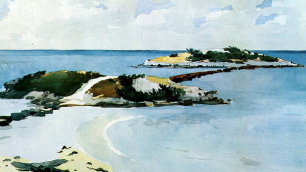 Archipelago Painting - The Favorite by Winslow Homer