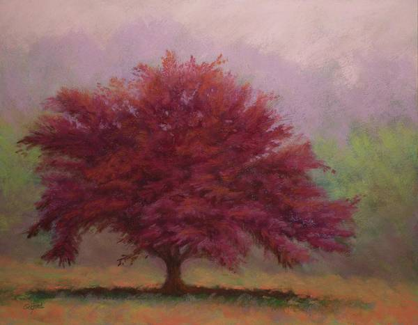 Wall Art - Painting - The Feather Tree by Paula Ann Ford
