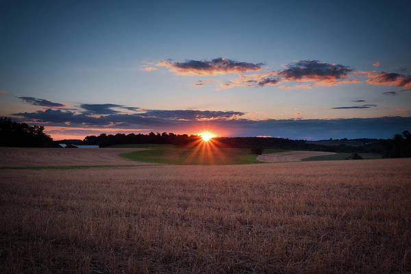 Photograph - The Fields At Sunset by Mark Dodd