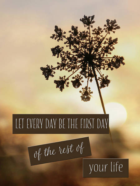 Wall Art - Photograph - The First Day by Lori Deiter