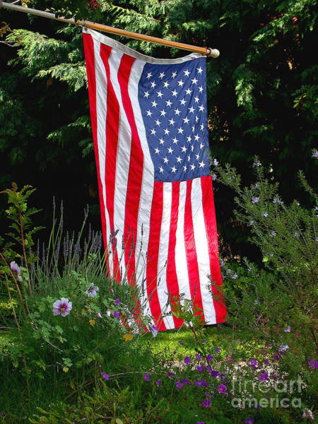 Fourth Photograph - The Flag by Marc Bittan