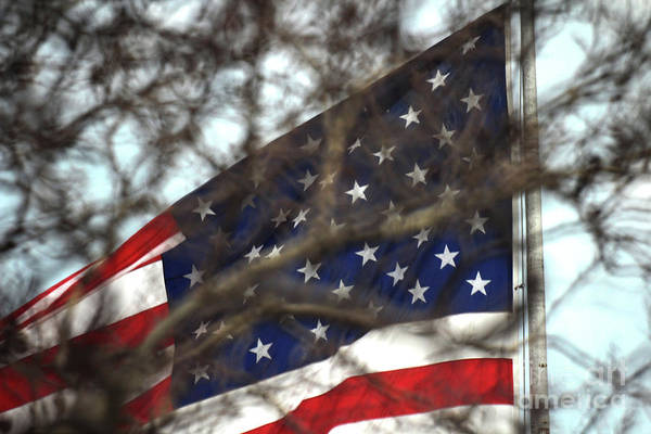 Photograph - The Flag Of The United States Of America Flying Over Ellis Island by Doc Braham