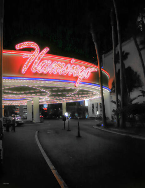 Photograph - The Flamingo by Ross Henton