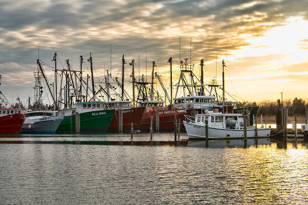 Photograph - The Fleet At Viking Village by Kristia Adams