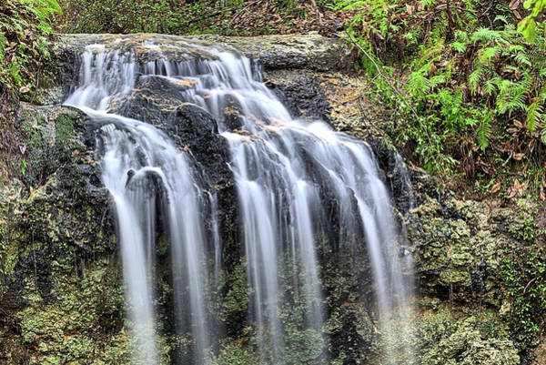 Photograph - The Florida Waterfall by JC Findley