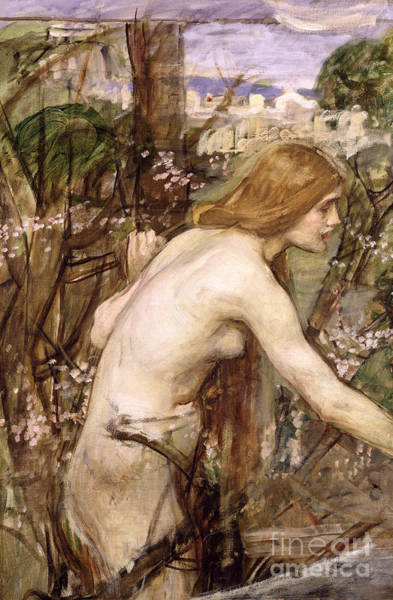 Crush Painting - The Flower Picker  by John William Waterhouse