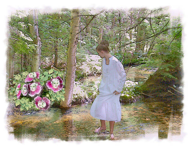 Wall Art - Photograph - The Flowering Brook by Rose Guay