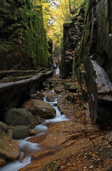 Photograph - The Flume by Juergen Roth