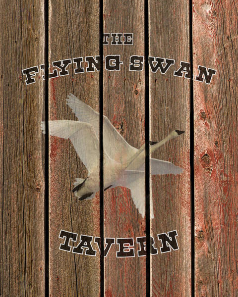 Photograph - The Flying Swan Tavern by TL Mair