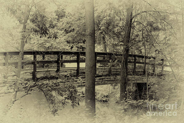 Photograph - The Footbridge by William Norton