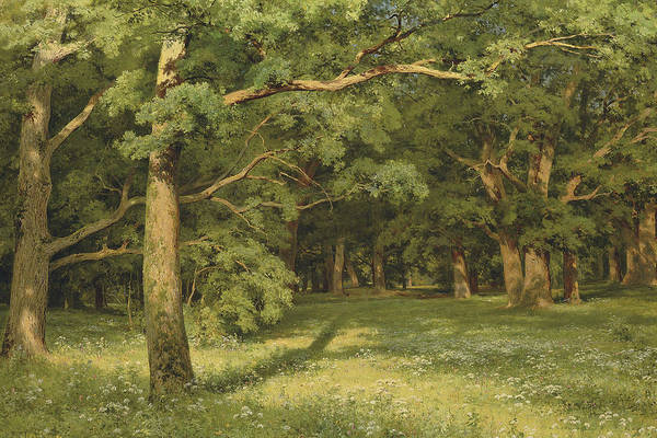 Painting - The Forest Clearing by Ivan Shishkin