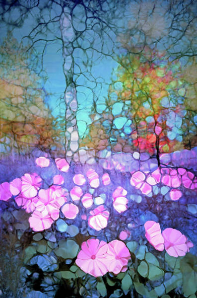 Cheery Digital Art - The Forest Floor In Bloom by Tara Turner