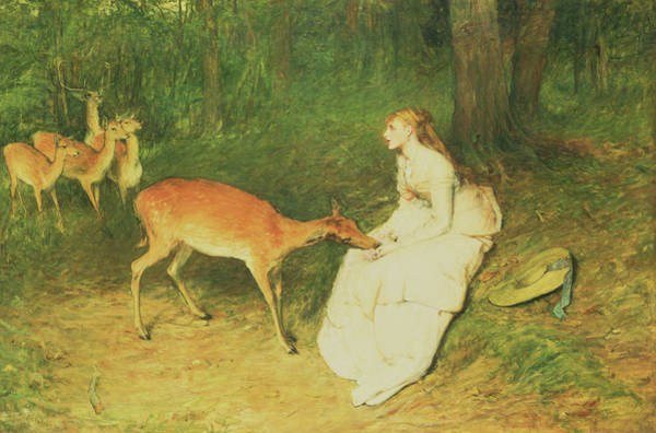 1871 Painting - The Forest Pet by William Quiller Orchardson