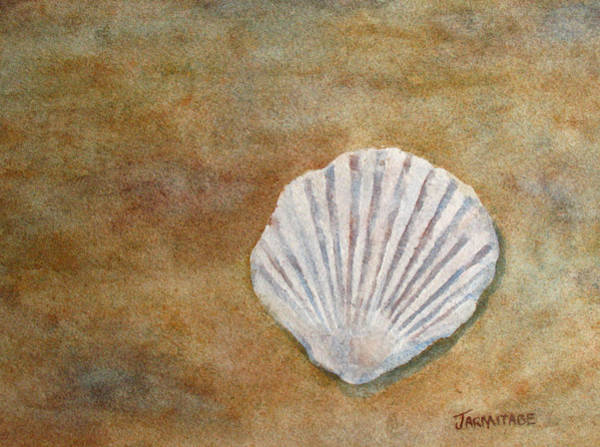 Fossil Wall Art - Painting - The Fossil Shell by Jenny Armitage