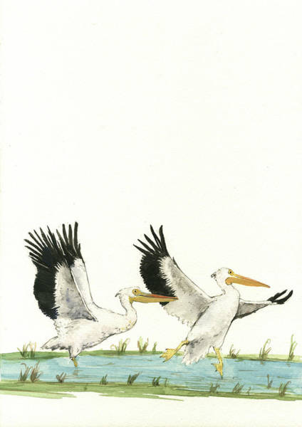 Pelicans Wall Art - Painting - The Fox And The Pelicans by Juan Bosco