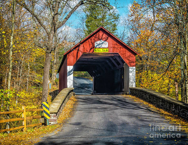 Photograph - The Frankenfield Covered Bridge by Nick Zelinsky