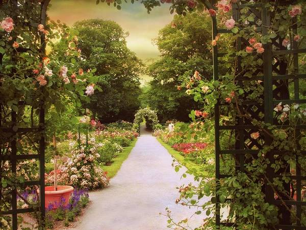 Formal Garden Photograph - The Garden Gate by Jessica Jenney