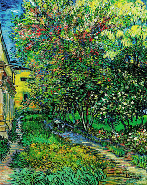 The Garden Of The Asylum At Saint-remy Art Print