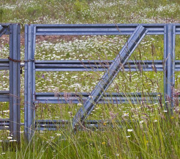 Gate Wall Art - Photograph - The Gate by Rebecca Cozart