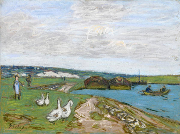 Impressionistic Drawing - The Geese by Alfred Sisley