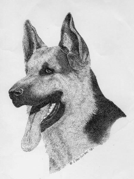 German Shepherd Drawing - The German Shepherd by Lucien Van Oosten