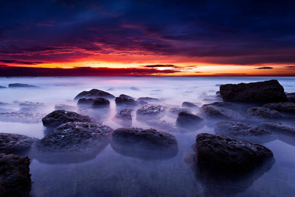 Wall Art - Photograph - The Gift by Jorge Maia