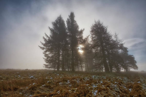 Photograph - The Gloomy Sunrise by Jeremy Lavender Photography