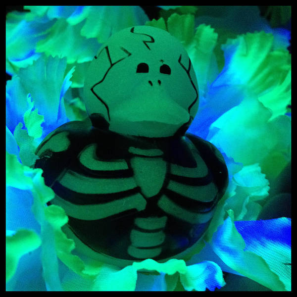 Blacklight Photograph - The Glow In The Dark Duck Of Death by Katherine Nutt