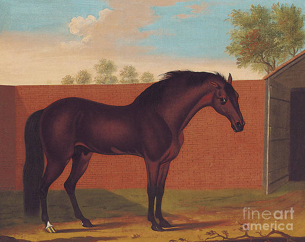 Mall Painting - The Godolphin Arabian by Thomas Butler