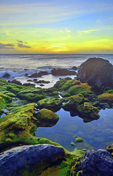 Photograph - The Golden Skies Of Molokai by Tara Turner