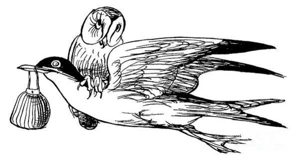 Wall Art - Drawing - The Good-natured Grey Gull by Edward Lear
