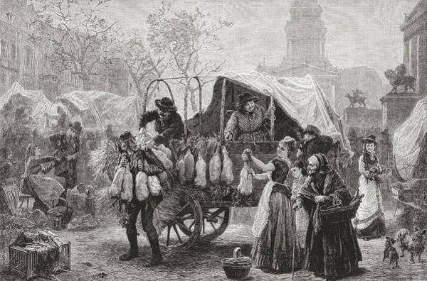 Goose Drawing - The Goose Market, Berlin, Germany In by Vintage Design Pics