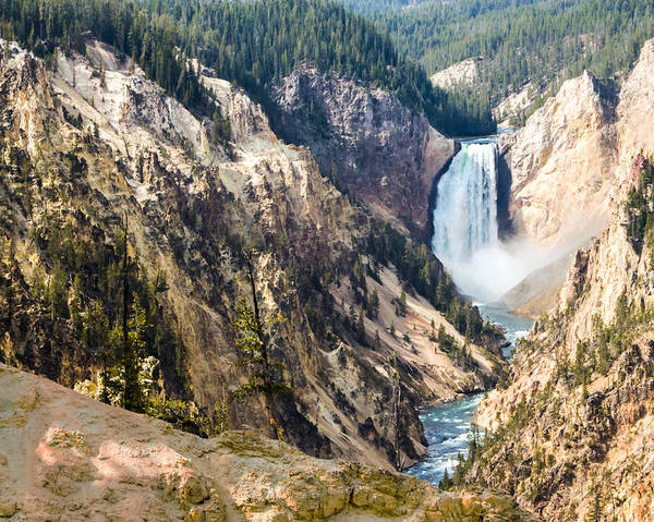 Photograph - The Grand Canyon Of Yellowstone Lower Falls by Nicholas Blackwell