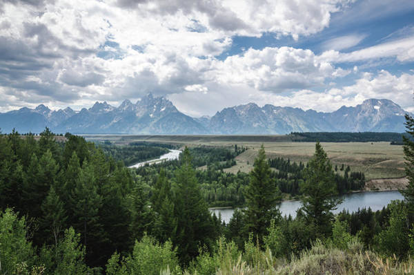 Photograph - The Grand Tetons by Margaret Pitcher