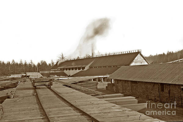 Photograph - The Grays Harbor Mill Co. Wa 1895 by California Views Archives Mr Pat Hathaway Archives