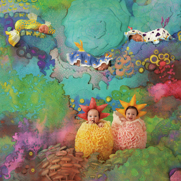 Corals Photograph - The Great Barrier Reef by Anne Geddes