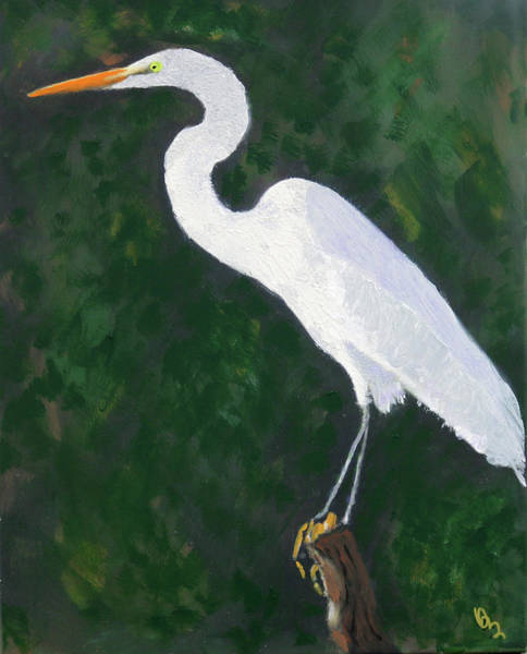 Painting - The Great Egret by Deborah Boyd
