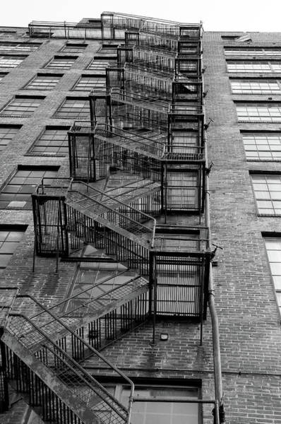 Photograph - The Great Escape by Steve Stuller