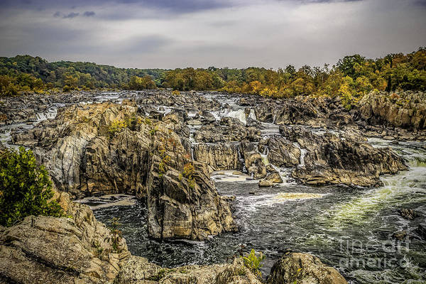 Photograph - The Great Falls Of The Potomac by Nick Zelinsky