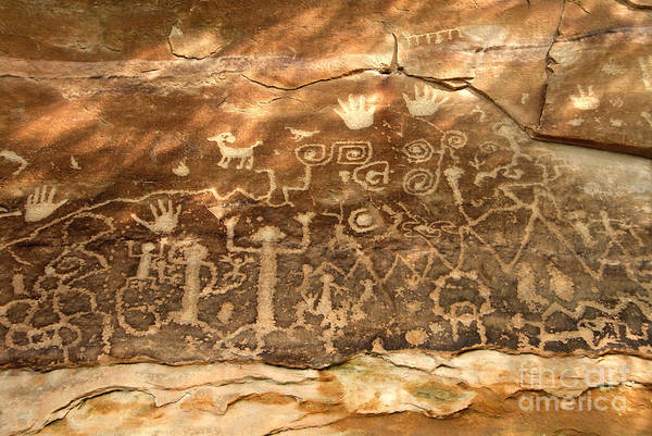Petroglyph Photograph - The Great Panel by David Lee Thompson