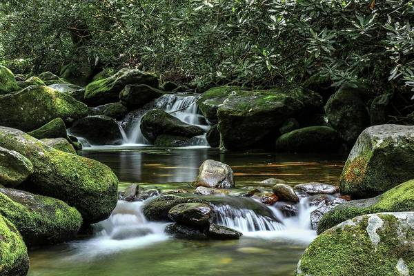 Photograph - The Great Smoky Mountains Roaring Fork Motor Trail Cascades And Mossy Boulders by Carol Montoya