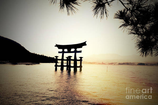 Photograph - The Great Torii  by Helge